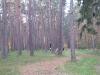 2010-10-30_7
