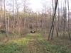 2011-11-26_zz2